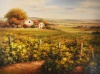 44287_austined_vineyard_and_farmhouse