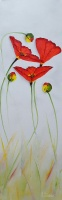 80946c_three_red_poppies_on_grey_36_x_12